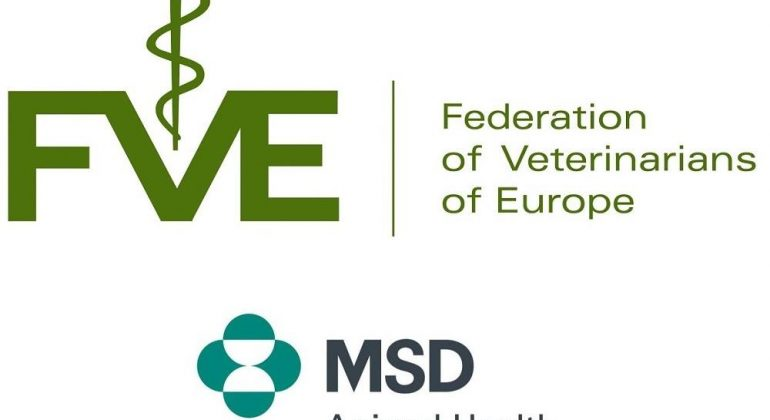 MSD Animal Health & FVE Veterinary Students Scholarship Program 2019