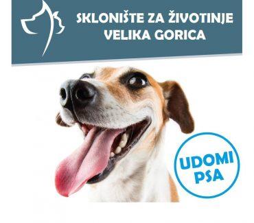 Veterinarski fakultet donirao hranu za životinje