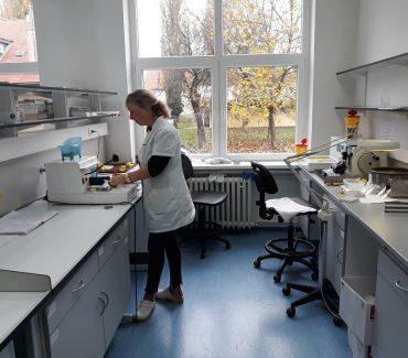 Cytology and Hystopathology laboratory