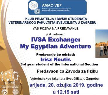 IVSA Exchange: My Egyptian Adventure