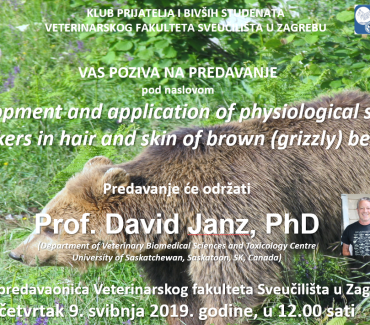 Development and application of physiological stress markers in hair and skin of brown (grizzly) bears
