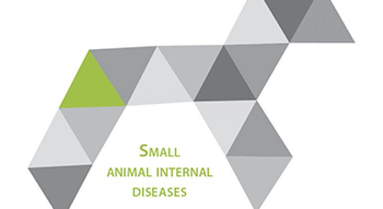 Small animal internal diseases
