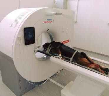Nova, suvremena oprema (CT uređaj)
