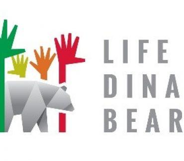 LIFE DINALP BEAR najbolji je projekt očuvanja prirode u Europi